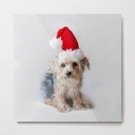 Cute Christmas Puppy Metal Print