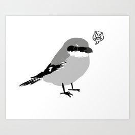 Northern Shrike Art Print