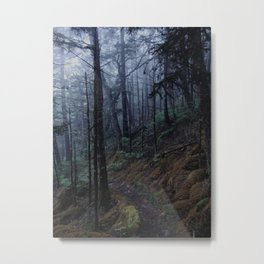 Smoky Mtn. Foggy Trail Metal Print