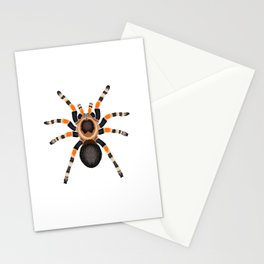 Red Knee Tarantula Stationery Cards