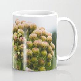 Monarch Caterpillar Coffee Mug