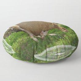 Lamb Suckling From An Ewe Floor Pillow