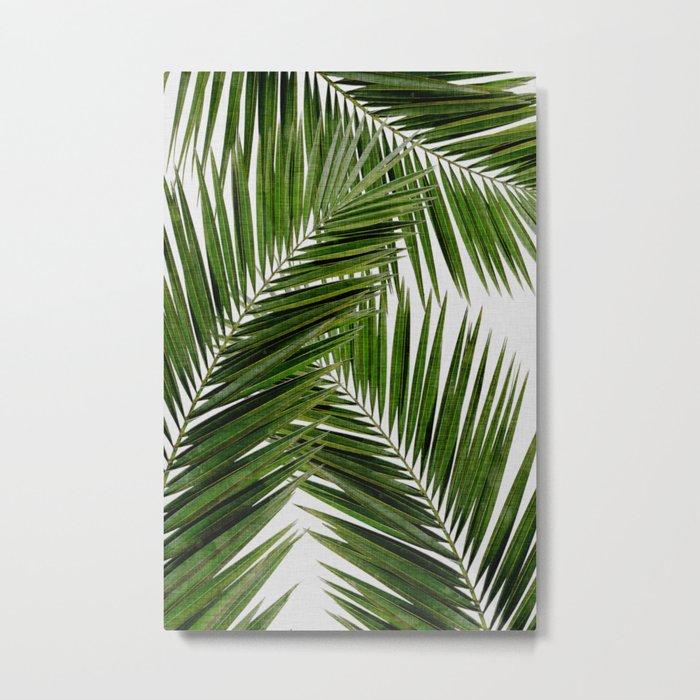 Palm Leaf III Metal Print