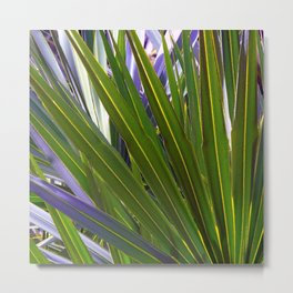 Saw Palmetto Tropicale Metal Print