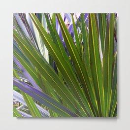 Saw Palmetto Tropicale Metal Print