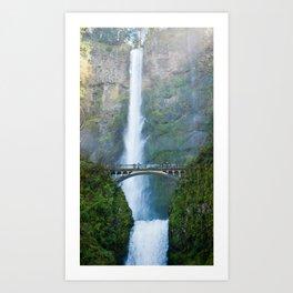 falls Art Print