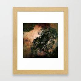 Under The Spell Framed Art Print