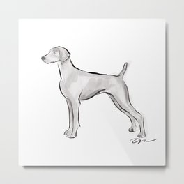 WEIMARANER INK DRAWING Metal Print