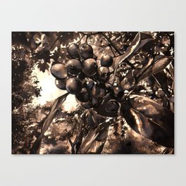 A Little Eden Canvas Print
