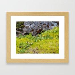 Tiny Mossy Landscape Framed Art Print