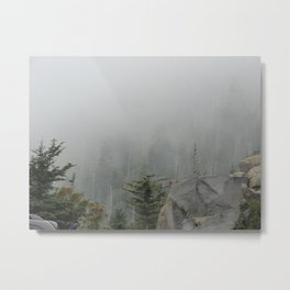 Clingmans Dome Fog Metal Print