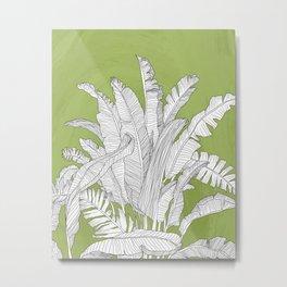 Banana Leaves Illustration - Green Metal Print