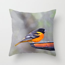 Oranges for the Oriole Throw Pillow