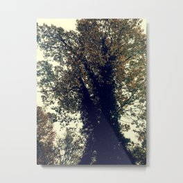 The Trees - Just The Two Of Us Metal Print