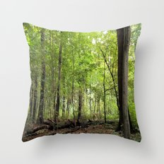 Transience in the Forest 2 Throw Pillow