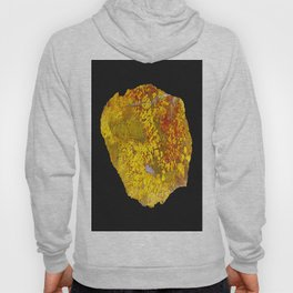 Cady Mountain Yellow Plume Agate Hoody