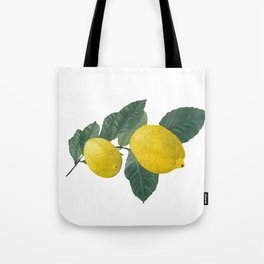 Oil painting of a lemon tree branch with two lemons, isolated on white background. Tote Bag