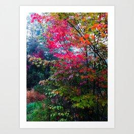 Fall's Finest Art Print