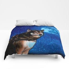 Siberian husky and the Blue Moon Comforters