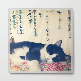 Cat Nap Metal Print