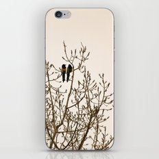 A quiet moment iPhone & iPod Skin