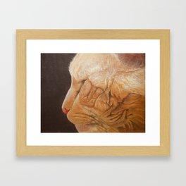 Kittty Framed Art Print