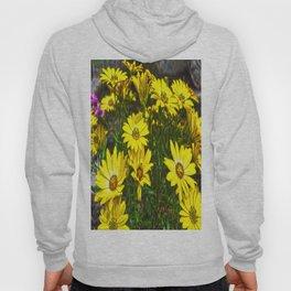 daisys flowers Hoody