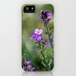 The Long Summer iPhone Case