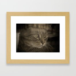All Animals must be Caged! Framed Art Print