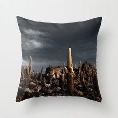 Cactus in Incahuasi island Throw Pillow