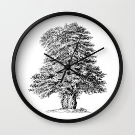 Old Tree Detailed Illustration Drawing Wall Clock