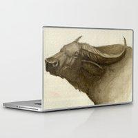 buffalo Laptop & iPad Skins featuring Buffalo by Vito Quintans