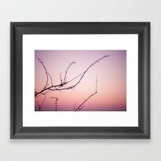 the dusk Framed Art Print