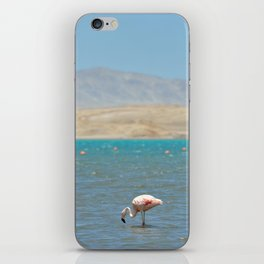 Paracas, Peru II iPhone Skin
