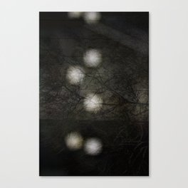 Snow Blind Canvas Print