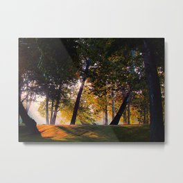 Morning Rays Metal Print