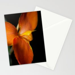 Orange Canna Lily at Longwood Botanical / Nature / Floral Photograph Stationery Cards