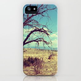 New Mexico 8 iPhone Case