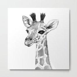 baby giraffe, black and white Metal Print