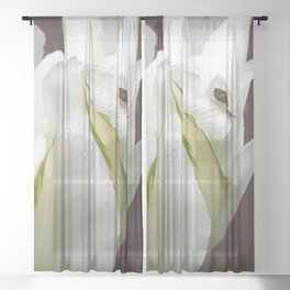 Melancholy of slowness Sheer Curtain