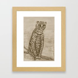 Ocelot Watching, by Ave Hurley Framed Art Print