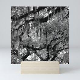 Oak and Moss in Black and White, Study 2 Mini Art Print