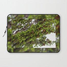 Large spruce fresh shoots Laptop Sleeve