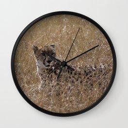 Grasslands Wall Clock