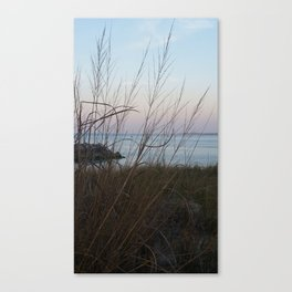 A Spray of Seagrass Canvas Print