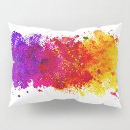 Color me blind Pillow Sham