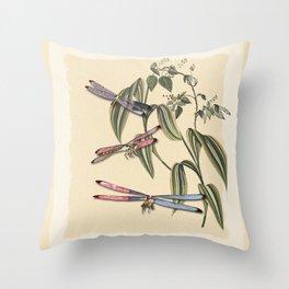 Dragonflies (A Study) Throw Pillow