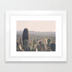 Arizona Cacti Framed Art Print