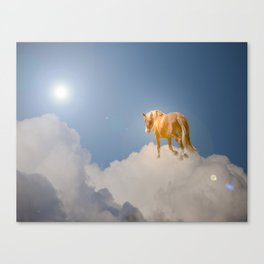 Walking on clouds over the blue sky Canvas Print