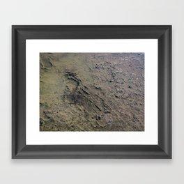 Ephemeral Framed Art Print